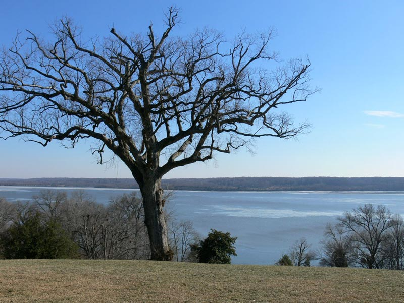 Not a bad view of the Potomac from the back porch of Mt. Vernon.