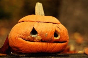 My days as a pumpkin are over. Now I'm just a squash.